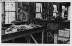 Inside View of Ward's Former Dogfish Processing Laboratory by Maine Department of Sea and Shore Fisheries and Ward's Natural Science Establishment INC. Rochester 9, NY