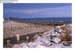 Rocky Beach, July 1982