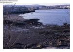 Shoreline of Unknown Community, June 1985