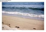 Sandy Beach, October 1963