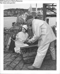 Lobstering Boothbay Harbor, Maine by Department of Sea and Shores Fisheries