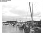 Shipyard Stonington, Maine by Department of Sea and Shores Fisheries