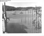 Harbor, Maine by Department of Sea and Shores Fisheries