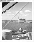 Boats in a Harbor by Maine Department of Marine Resouces