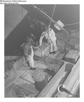 Shrimp Harvesting - Two Men on Fishing Vessel by Maine Department of Marine Resouces