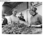 Shrimp Processing - Workers at Fish Processing Plant in Boothbay Harbor, Maine by Maine Department of Marine Resouces