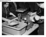 Shrimp Processing - Women Handling Shrimp at Stinson Processing Plant in Portland, Maine by Maine Department of Marine Resouces