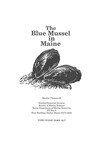 Research Reference Document 95/17 : The Blue Mussel in Maine by Stanley Chenoweth