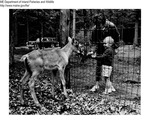 Animal Displays by Maine Departmentof Inland Fisheries and Wildlife