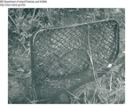 Beaver by Maine Department of Inland Fisheries and Game and Bill Cross
