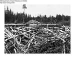 Beaver Management by Maine Departmentof Inland Fisheries and Wildlife