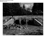 Dams by Maine Department of Inland Fisheries and Game and Bill Mincher