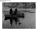 Grand Lake Stream - Studying Landlocked Salmon at Love Lake, Washington County, Maine by Maine Department of Inland Fisheries and Wildlife