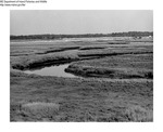 Misc Marshes by Maine Department of Inland Fisheries and Wildlife