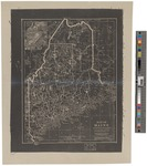 Map of Maine for the Eclectic Geographies by Russell Hinman 1853-1912
