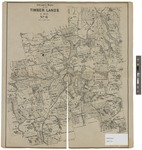 Stuart's Map of the Timberlands of Maine: Number 6 1902 by J. H. Stuart & Co.