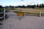 Acadia National Park - Sand Beach Dune