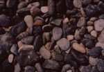 Beach pebbles by Henry N. Berry IV