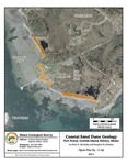 Coastal sand dune geology: Fort Foster, Gerrish Island, Kittery, Maine