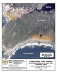 Coastal sand dune geology: Bald Head and Head Coves, Small Point, Phippsburg, Maine