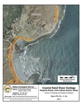 Coastal sand dune geology: Seapoint Beach, Cutts Island, Kittery, Maine