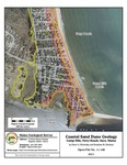 Coastal sand dune geology: Camp Ellis, Ferry Beach, Saco, Maine