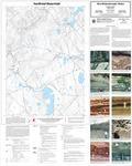 Surficial materials of the Morrill quadrangle, Maine by Thomas K. Weddle and Daniel B. Locke