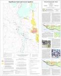 Significant sand and gravel aquifers in the Ellsworth quadrangle, Maine by Craig D. Neil and Daniel B. Locke