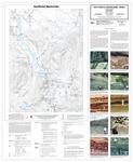Surficial materials of the East Andover quadrangle, Maine by Daniel B. Locke, Thomas K. Weddle, and Glenn C. Prescott Jr
