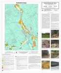 Surficial geology of the Rumford quadrangle, Maine by Thomas K. Weddle, Daniel B. Locke, and Lindsay J. Spigel