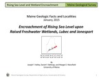 Encroachment of Rising Sea Level upon Raised Freshwater Wetlands, Lubec and Jonesport