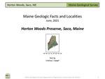 Horton Woods Preserve, Saco, Maine by Lindsay J. Spigel