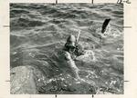 Harry Goodridge and Seal