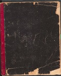 Women's Foreign Missionary Society Treasurer's Book 1870-1881
