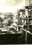 Annie's Shop at Fogelin's Store; Signe Swenson & Annie Fogelin