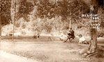 Postcard - Hedman Park in Jemtland, ME