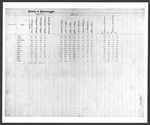 1888 General Election: Clerk's Returns: Representatives to Congress, Governor, County Officers by Bureau of Corporations, Elections and Commissions