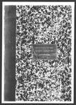 1928 General Election: Referendum